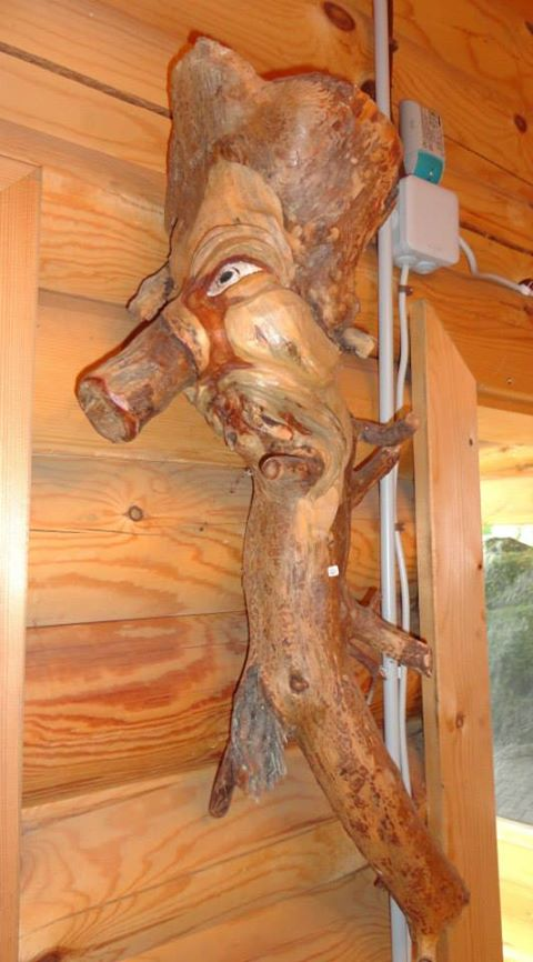Wurzelkopf  80cm- 40cm- 25cm  VP €48,-